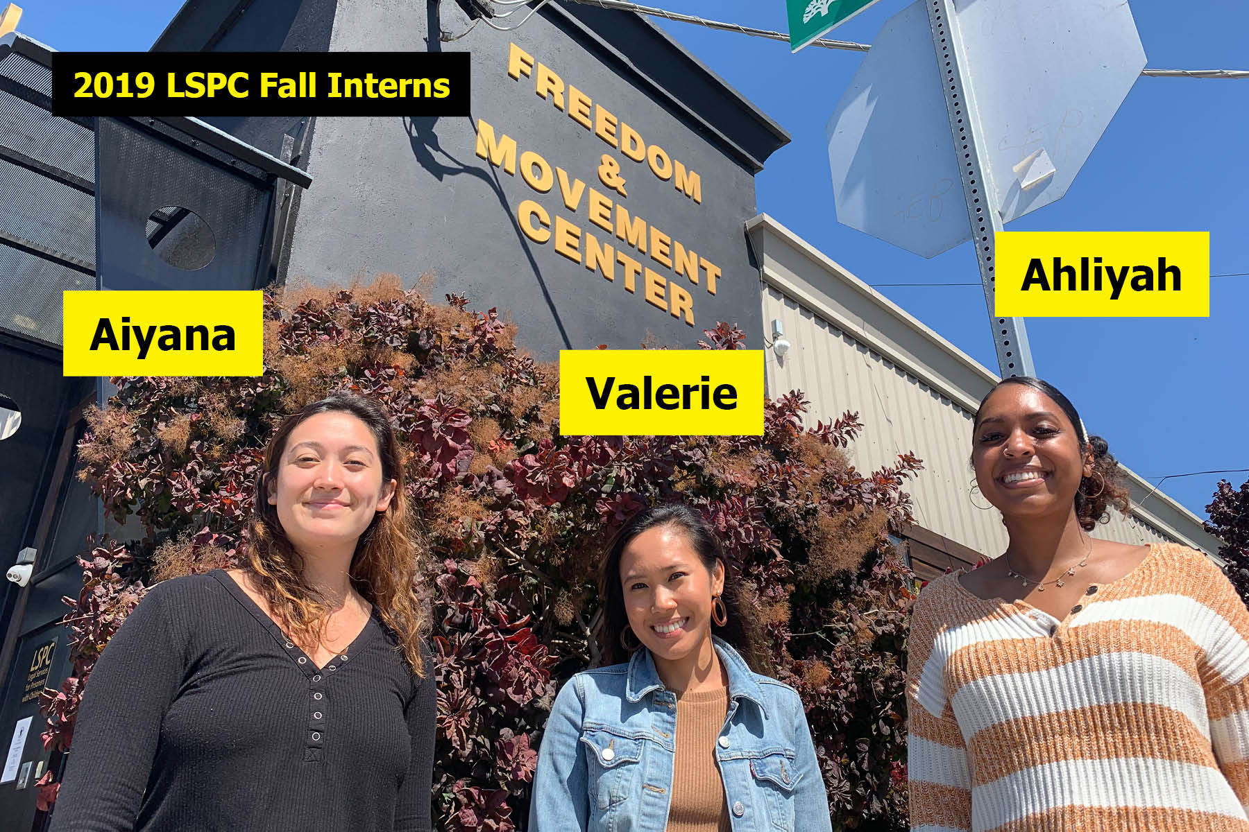 2019 Fall Interns - labeled